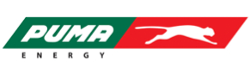 Logo Bronze - Speedy Kiwi